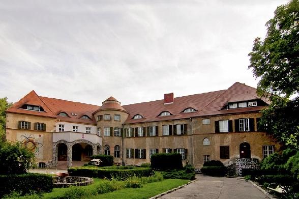 Renice - Pałac (obecnie Młodzieżowy Ośrodek Wychowawczy)