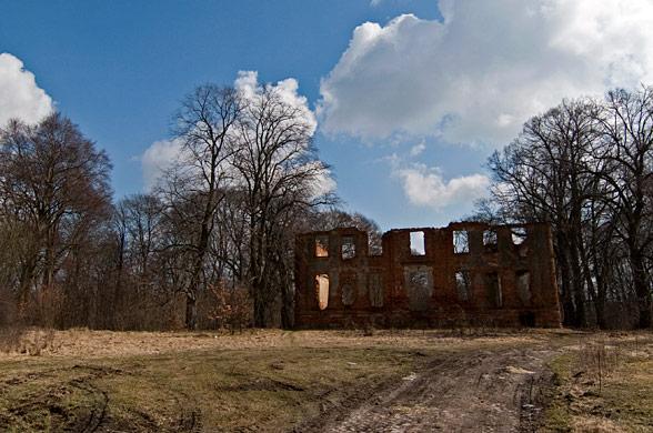 Dobropole. Ruiny pałacu z XVIII wieku.